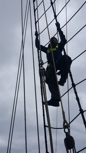 Day 7 rigging